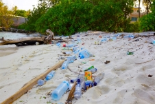 白い砂浜に打ち上げられたゴミ